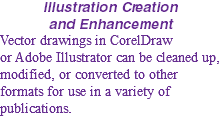 Illustration Creation